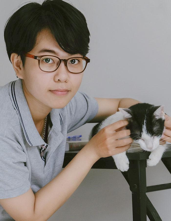 Bệnh suy gan thận ở mèo và cách chăm sóc mèo bệnh